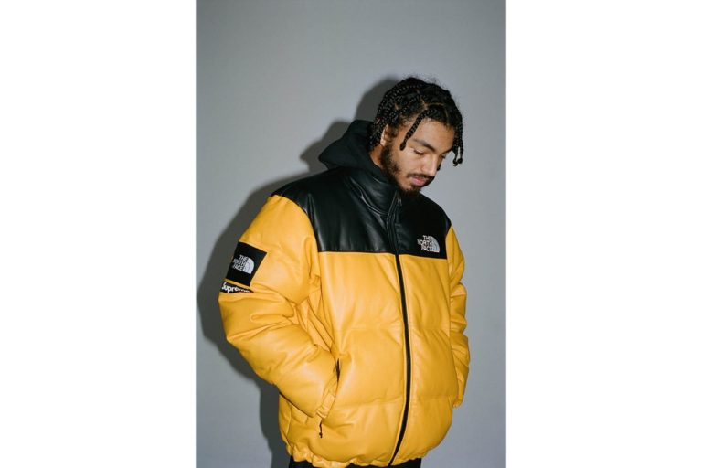 supreme tnf the north face collection 2017 leather