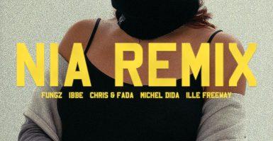 Fungz Nia Remix