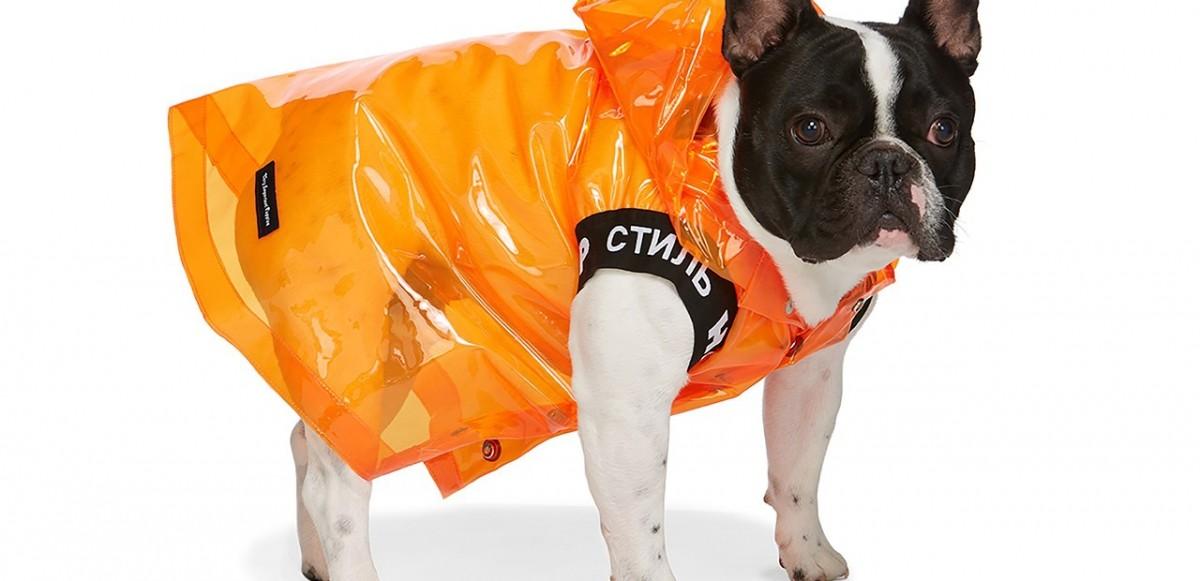 SSENSE släpper hundkläder från Heron Preston, Moncler, Versace & många fler